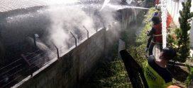Bangunan Kantin di Lokasi Kolam Renang Isen Mulang Juga Terbakar