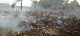 Lahan Kosong Tiga Hektare Terbakar di Kawasan Bandara Tjilik Riwut