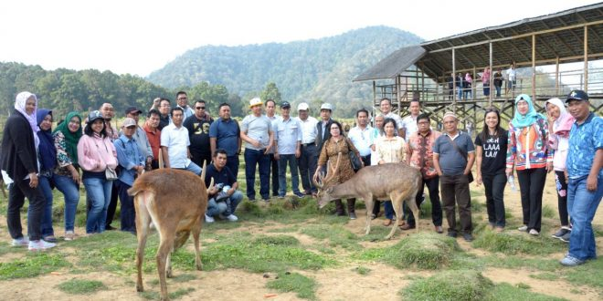 Pemko Palangka Raya Lirik Pengembangan Ternak Rusa