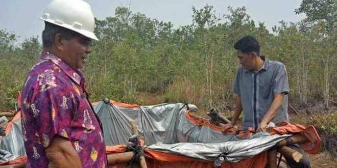 Palangka Raya Urutan 17 Daerah Paling Rawan Karhutla