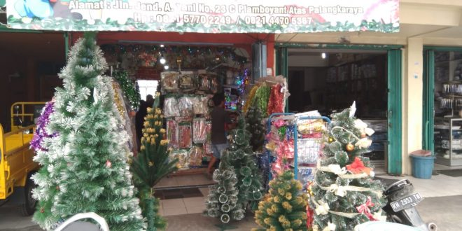 Pedagang Pohon Natal di Palangka Raya Menuai Rejeki