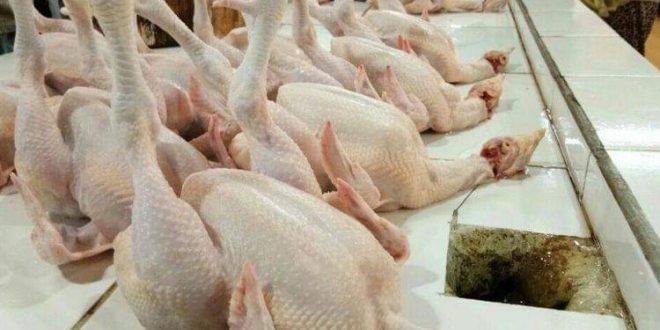 Harga Ayam Kembali Normal Pasca Natal dan Tahun Baru 2019