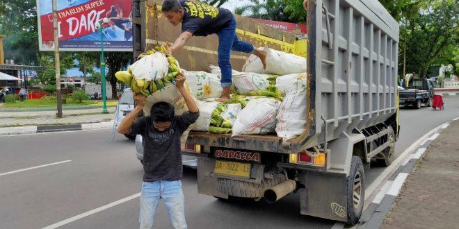 Jagung untuk Rekor MURI Didatangkan dari Kalampangan