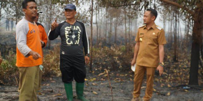 Walikota Palangka Raya Pantau Lokasi Kebakaran Daerah Kalampangan