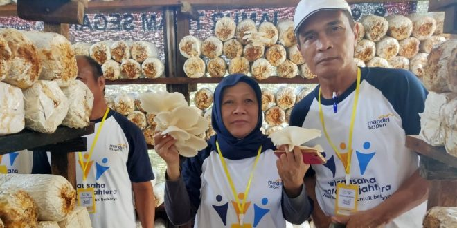 Budidaya Jamur Tiram Bersama Bank Mantap Palangka Raya