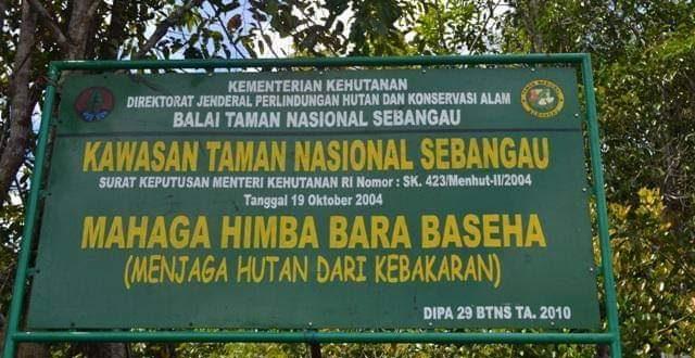 Titik Api di Taman Nasional Sebangau Sudah Hilang