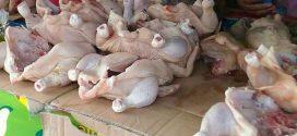 Tarif Angkutan Udara dan Daging Ayam Penyumbang Inflasi di Palangka Raya