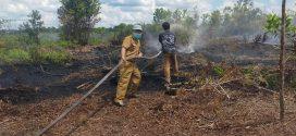 Lahan Bekas Dibersihkan Terbakar